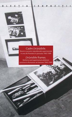 Cadre (in)vizibile. Retorici și practici expoziționale experimentale în arta din România în perioada 1965-1989 image #0